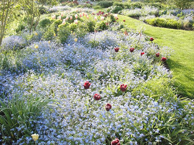Gardens - Kennedy Song Dusoir